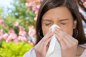 mnogolikost-allergij-glavnoe-kovarstvo-neduga