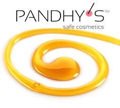 oficialnyj-sajt-pandhys-predlagaet-vam-produktivnoe-sotrudnichestvo