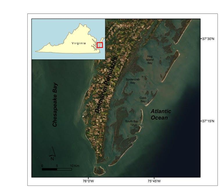 Спутниковая карта, показывающая проектный район в прибрежной Вирджинии.